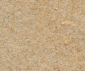 hiekkaasalosta_maanrakennusrannikko